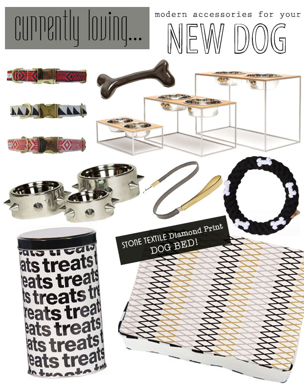 Currently Loving…Modern Accessories for the dog